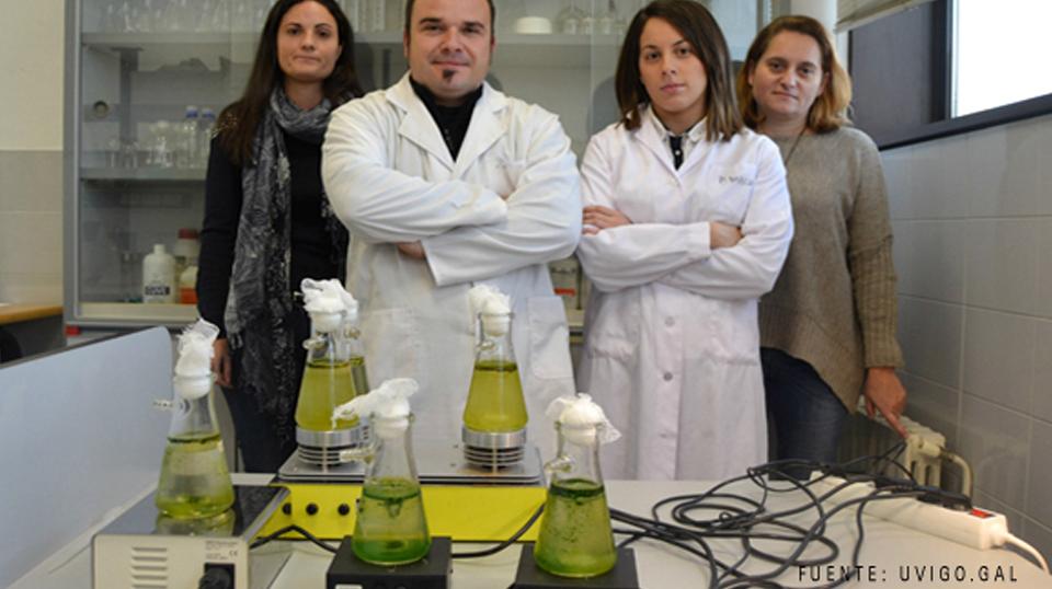 Microalgas como biocombustibles