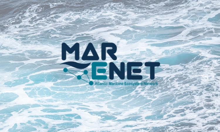 MarENet.org : El Hub de conocimiento marítimo