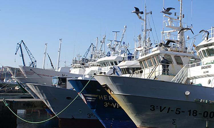 El Puerto de Vigo obtiene los mejores resultados de Galicia y se sitúa como quinto de España