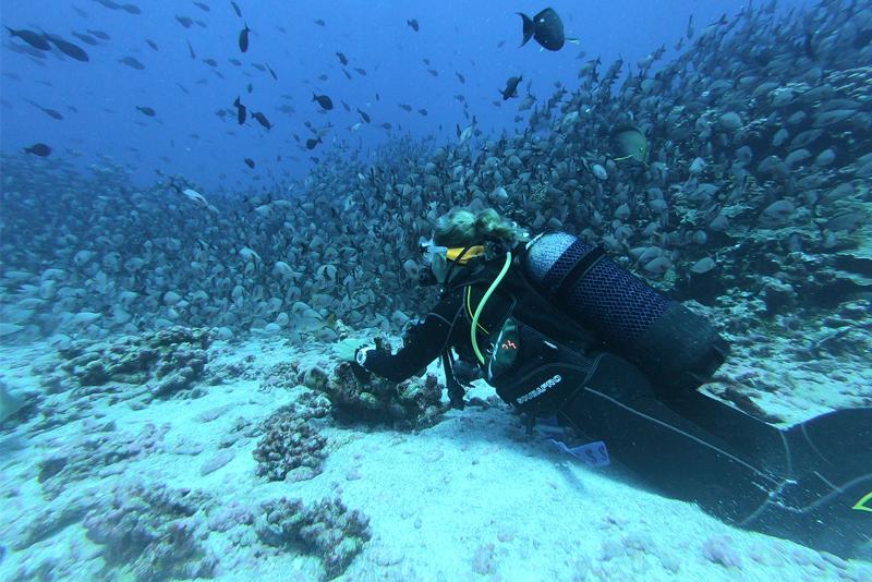 PuertAlMar, el proyecto que sensibiliza a los jóvenes sobre la importancia de cuidar el entorno marino